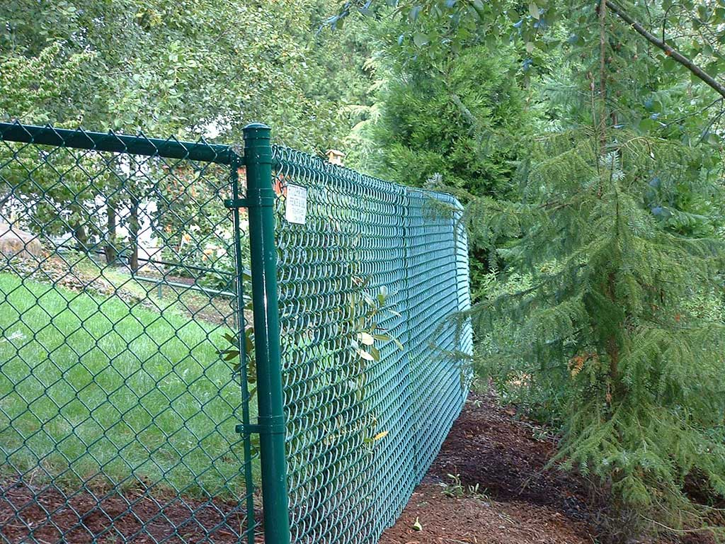Green vinyl chain link fitzpatrick fence and rail